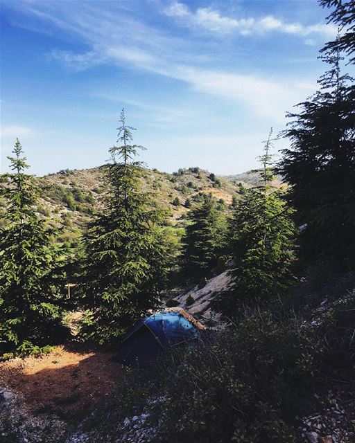 3 days surrounded by lebanese cedars and fresh air, mountains and blue sky, (Cedars Ground Campsite)