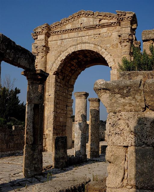 Arriving in Style. There's nothing like a triumphal archway (or a sweeping... (Tyre, Lebanon)