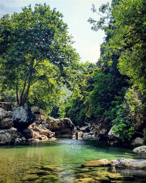 nature river green trees mountainfellas water summer vibes rocks sky... (Yahchouch)