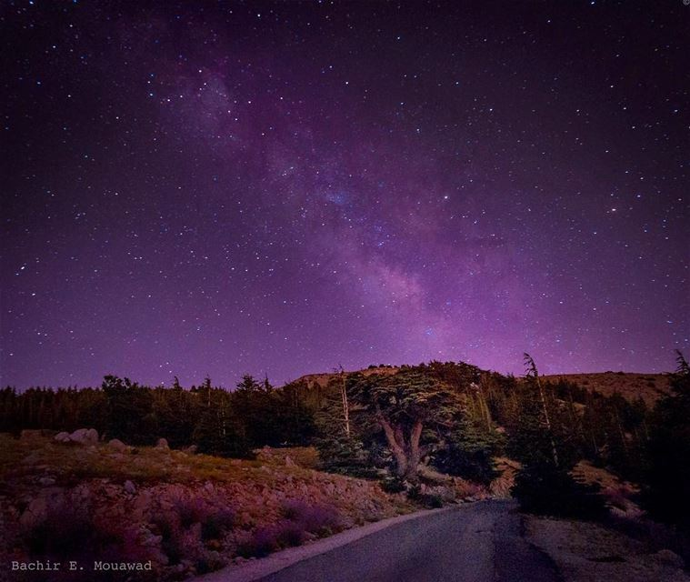 nightphotography  nighthike  night  stargazing  stars  picoftheday ...