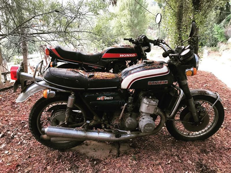 bike bikelife vintage suzuki 750 honda 400  hawk old eighties lebanon...
