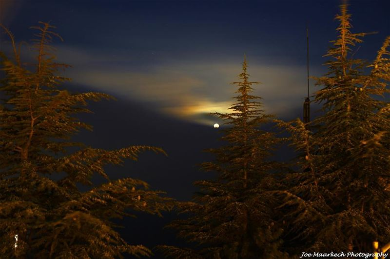 We love the night and its quiet; and there is no night that we love so... (Annâya, Mont-Liban, Lebanon)