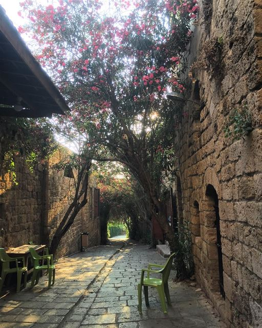 Beautiful  byblos  livelovelebanon  livelovebyblos  jbeil ❤️💚🖤 (Byblos - Jbeil)