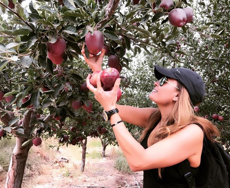 When you steal your favorite fruit while you are hiking in the mountains🍎� (El Arz)