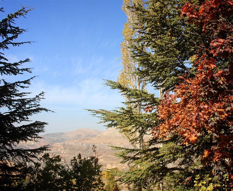 Brightful colors of  autumn in the  mountain  landscape_captures  skyline ... (Lebanon)