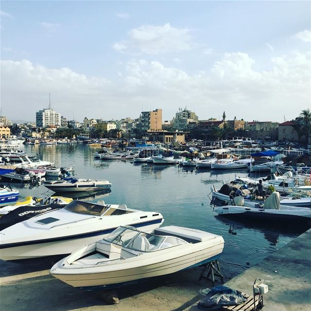 lebanon  tyre  fun trip  hike  shore  fishing  trip  adventure ... (Tyre, Lebanon)