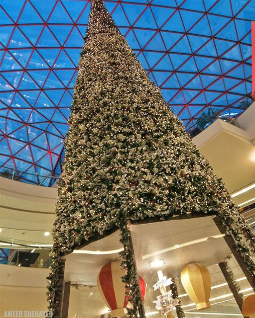 Christmas Spirit 🎄🎄 tree  decoration  christmas  christmastree  thespot... (The Spot Choueifat)