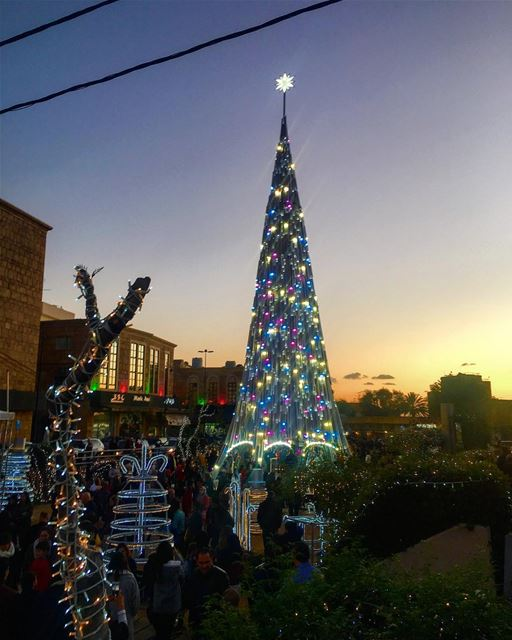 Christmas In Jbeil 🎅🏻🎄🎅🏻🎄 🎅🏻 nature naturephotography lighting... (Jbeil جبيل)