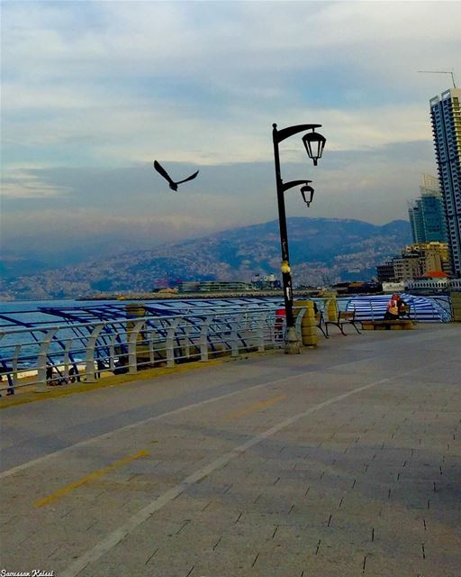 streetphotography  flying  freedom  beirut  lebanon  sea clouds...