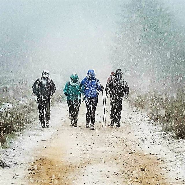 snowhikes  hikingaloneisawesome  hikers  adventertime  adventurer ... (Al Shouf Cedar Nature Reserve)