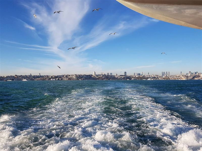 While everyone is posting pictures of snow, I'm still happy with the sea... (Istanbul, Turkey)