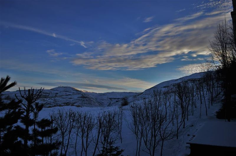 If i could i would take photos for your white heart..... (Kfardebian)