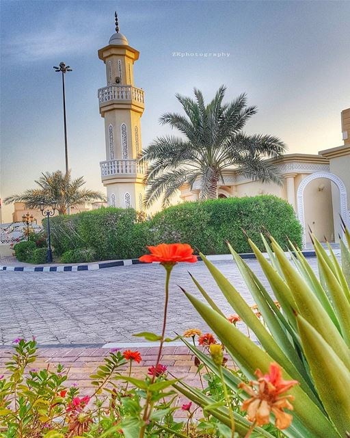 Blessed Friday..🌷 * amazing_qatar  qatarism  clubhdrpro  clubasiapro ... (Doha)