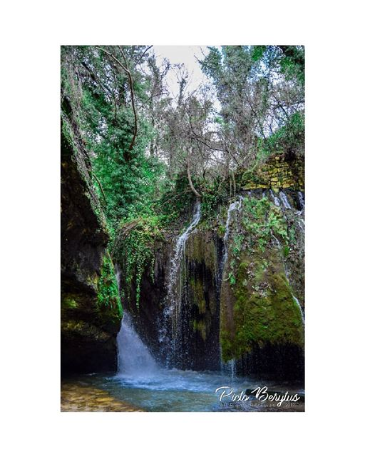"""Waterfalls are exciting because they have power, they have rainbows, they..."