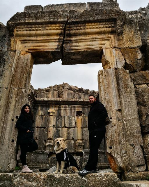 powercouple 💏 🐶 😍  rachaya  greektemple  withhim❤️  doglover  lebanon ...
