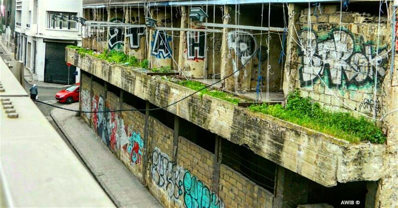 wall  tourism  outdoor  landscape  travel  streetphotography ... (Monot Street)