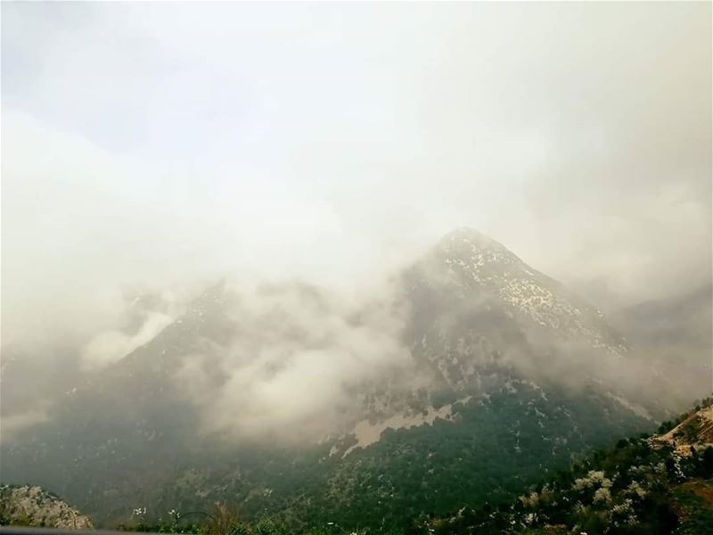 When the  fog clears,  sunshine follows. JabalMoussa  unescomab  unesco ...
