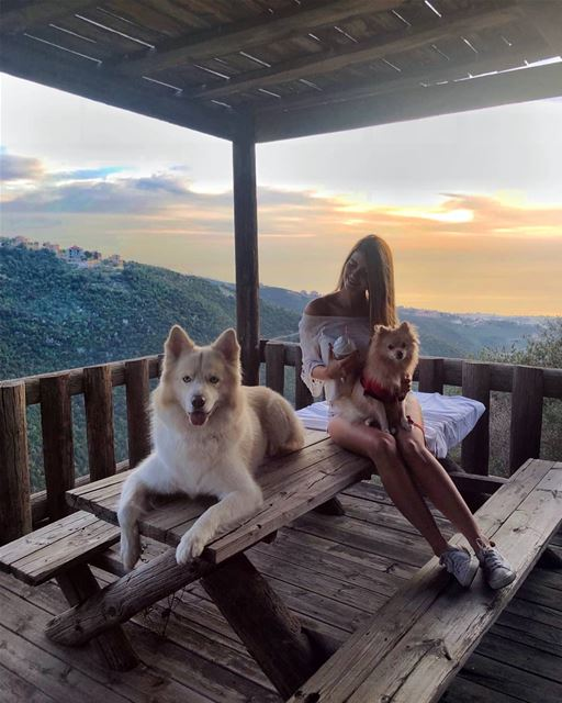 How I want every day to end 💫...... sunset  view  dogs  husky ...