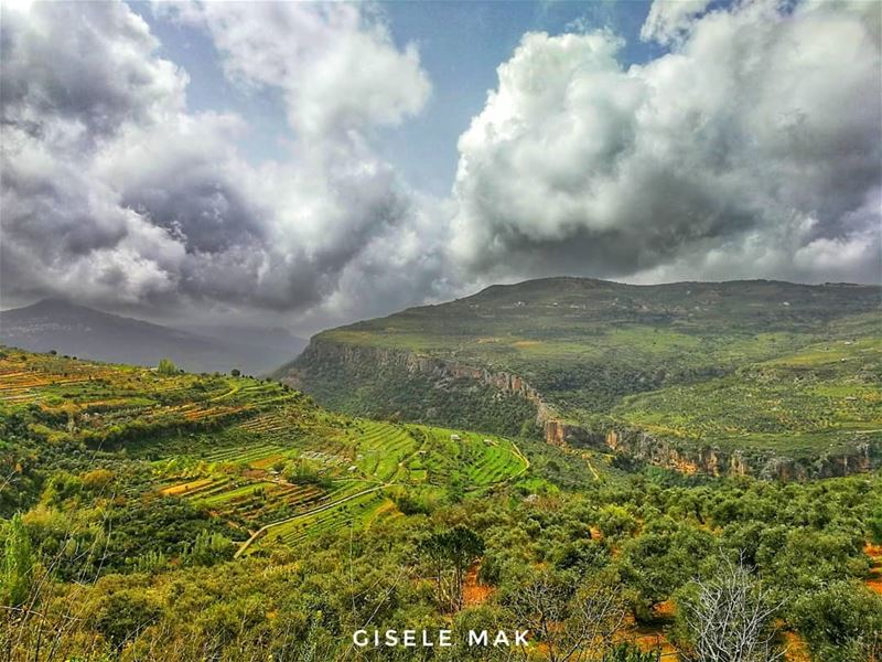 Lost between bloomy and gloomy. landscape  landscapephotography  mountain... (Lebanon)