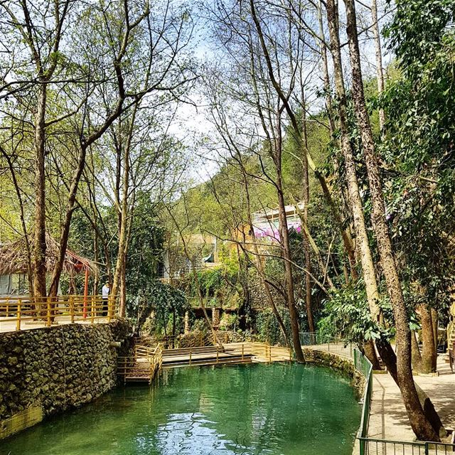 🇱🇧🇱🇧❤❤ naturelover  naturephotography  discoverplaces ... (Chouf)