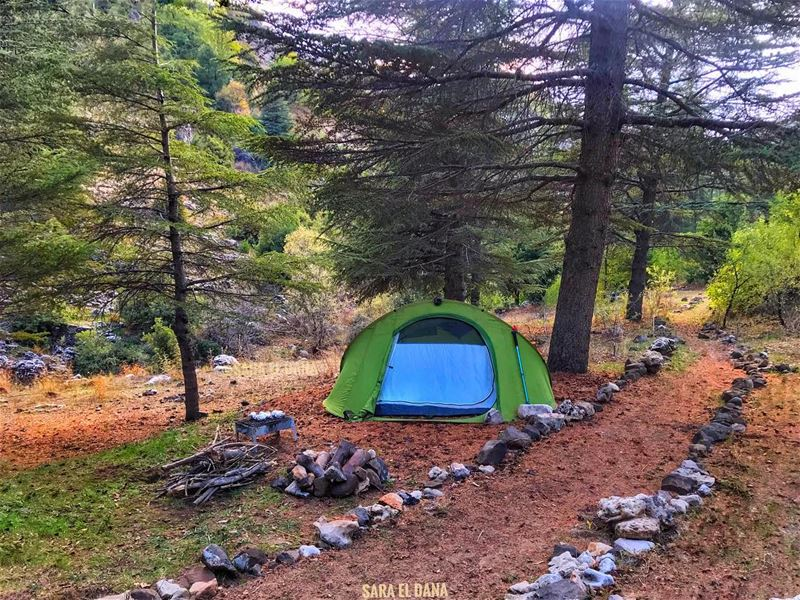 Mondays can be fun too! 🏕 (Ehmej, Mont-Liban, Lebanon)