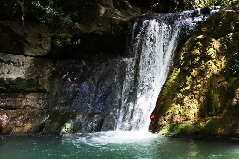 Just let go and fall like a little waterfall... nature  hiking ... (El-Mukhtarah, Mont-Liban, Lebanon)