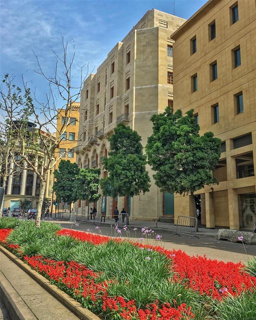 Springful Colorful Beirut🌳🌿❤️ ____________________________________... (Downtown Beirut)