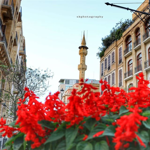 Friday 🇱🇧 * insta_lebanon  ig_lebanon  lebanon_pictures  loves_lebanon... (Downtown Beirut)