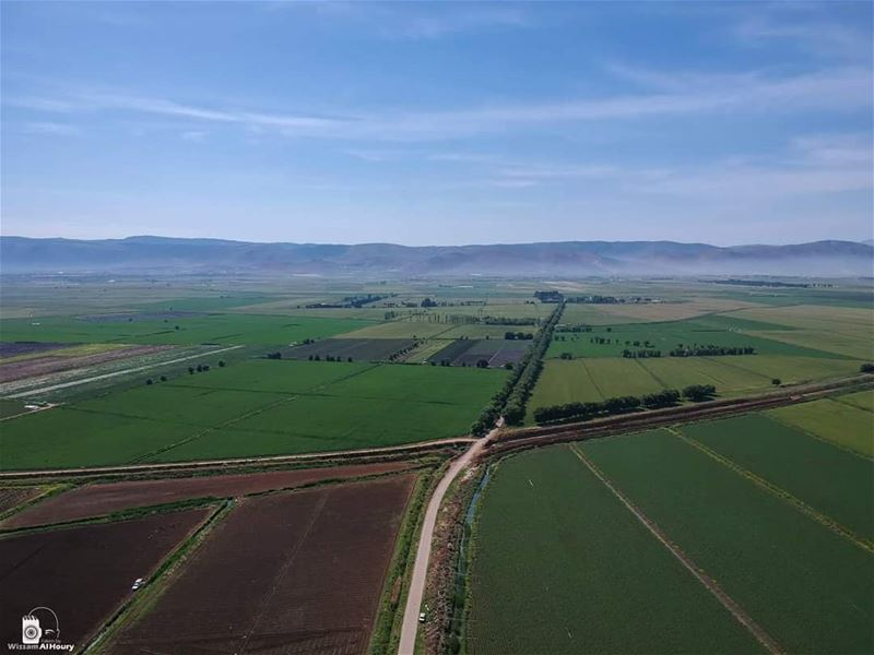 bekaa bekaavalley greenland greenfield nature naturelovers landscape... (Bekaa Valley)