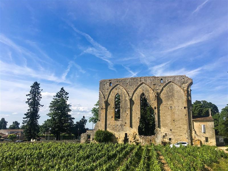 History,  Vineyard and nice weather in a picture... (Saint-Émilion)