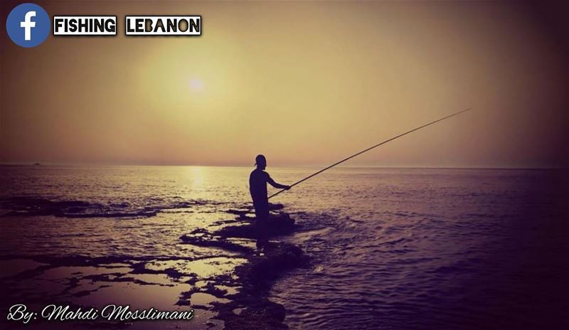 @mosslimanimahdi @fishinglebanon - @instagramfishing @jiggingworld @whatsup (Naqoura)