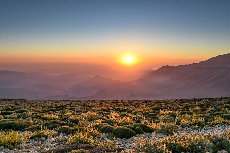The last light from 3000m | The sunset at this altitude is totally a... (Qornet es Saouda)
