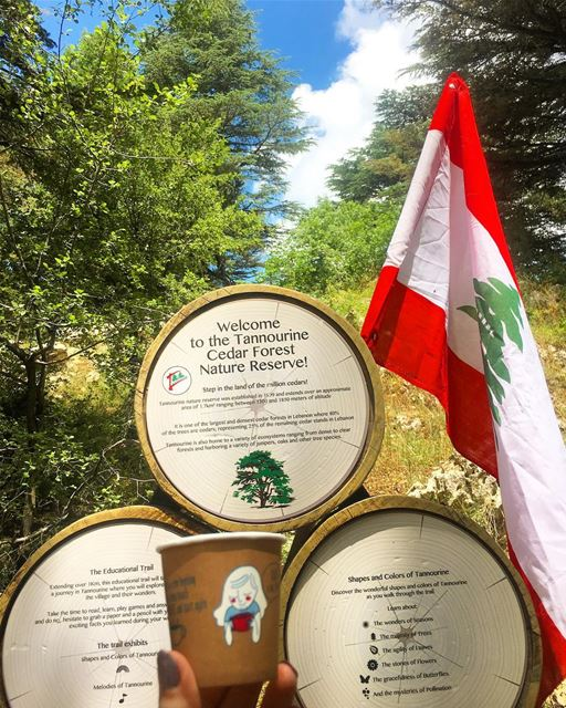 Sometimes you have to just be a tourist in your own city 🇱🇧  mylebanon.... (Arz Tannoûrîne)