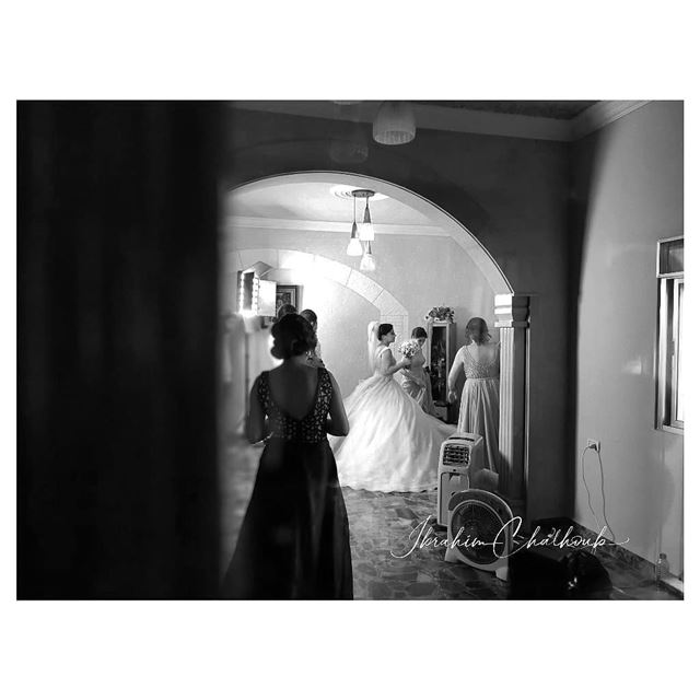 Wedding day -  ichalhoub in al- koura north  Lebanon shooting with a...