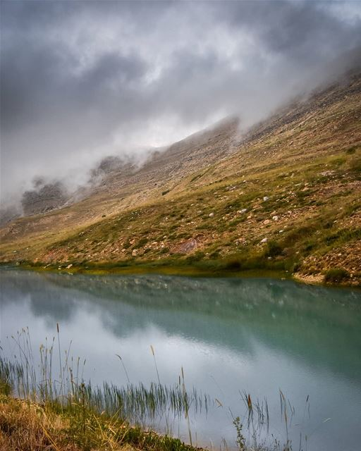 """Faded"" - cold weather and mountains fading away by the fog. After a long... (Falougha, Mont-Liban, Lebanon)"