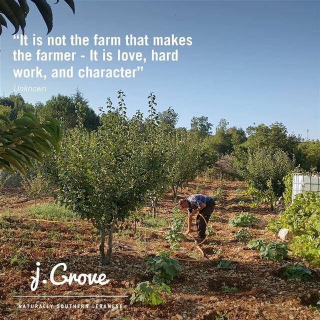 👨🏾‍🌾💚 jGrove  Quote  HardWork  Farmer  Love  Life  Care  Work ...