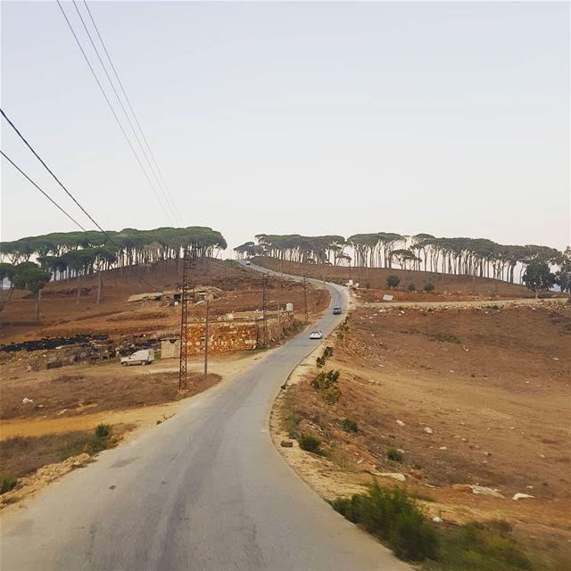 One road....many destination  ig_respect ig_lebanon  wearelebanon ... (`Ayshiyah, Al Janub, Lebanon)