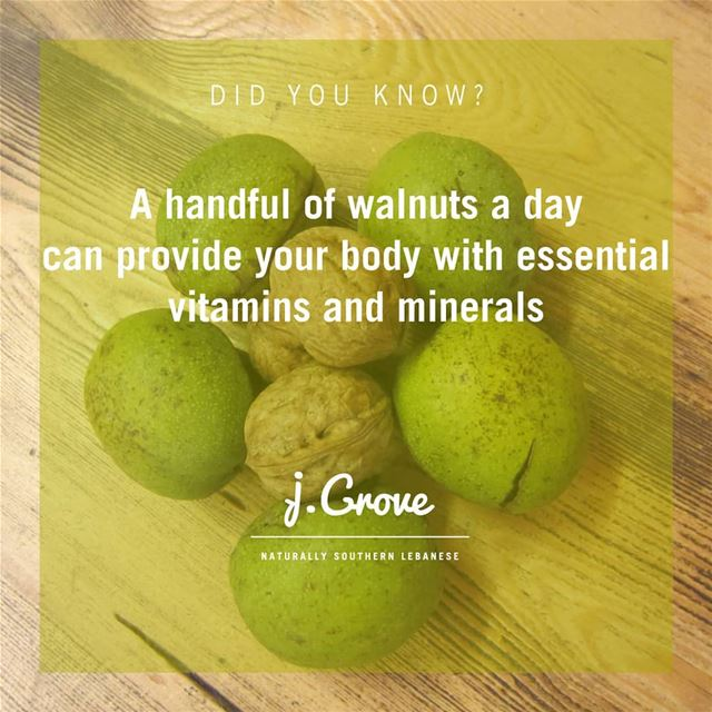Latest studies have shown walnuts have the potential to prevent cancer and...