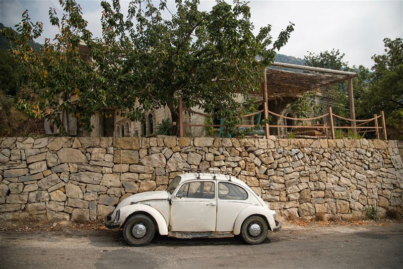 Friends for life: Abo Raymond and his 1973  beetle ...  lebanon ...