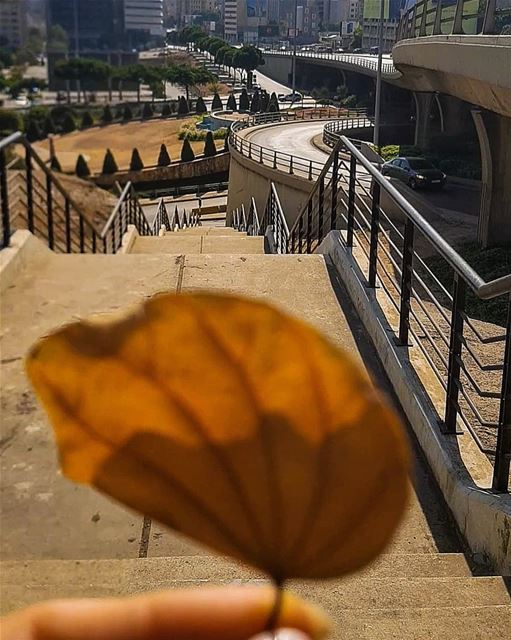 Not pale .. but Gold,,No wrinkles.. but Life pathways..No steady shape,,... (Beirut, Lebanon)