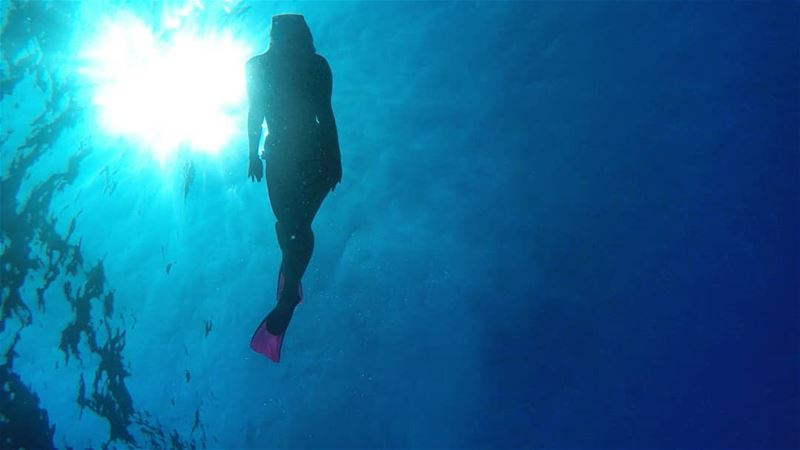 Live  free  diving  beachlovers  oceanscape  sunset_vision  underwaterlife...