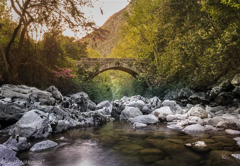 Faith is the bridge to all dreams nikon  photography  sigmaart  picture ... (Naher Ibrahim - Chuwwen)