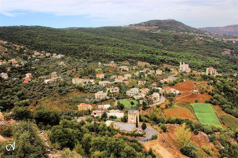 town  forest  tree  trees  pinetrees  village  nature  landscape  view ... (Jezzîne, Al Janub, Lebanon)