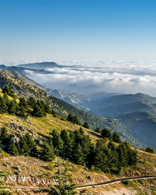 Mountains and valleys ⛰️⛰️ - Barouk Maaser El Chouf above the clouds... (Arz el Bâroûk)