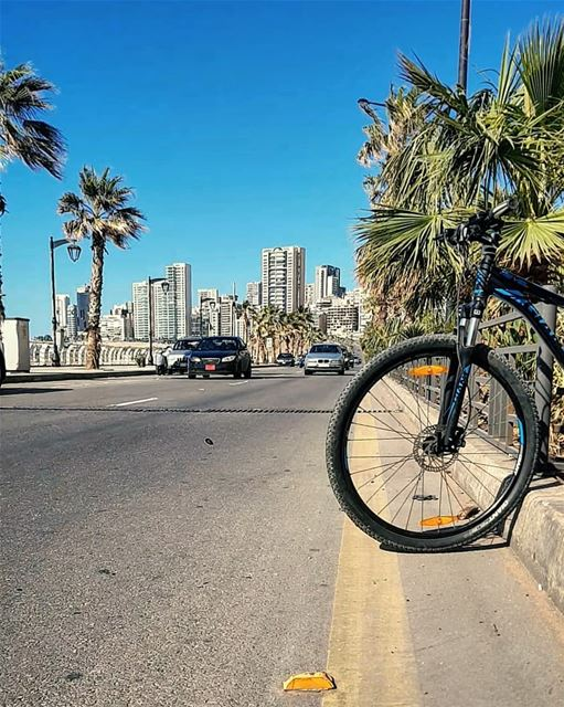 No need for traffic light🆓️My wheels do not see any Red light.. and my... (Beirut, Lebanon)