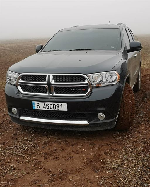 lebanon north hunting season dodge durango wild life nature colors fog... (Qarha, Liban-Nord, Lebanon)