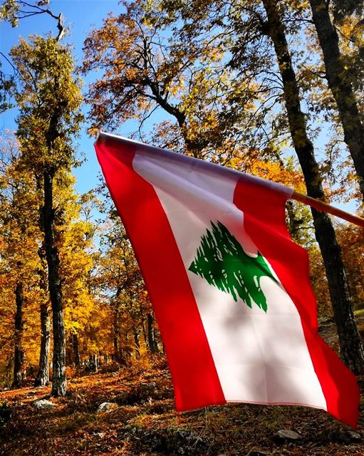 freedom has a high cost and  liberty means  responsabilityHappy... (Fnaïdek, Liban-Nord, Lebanon)