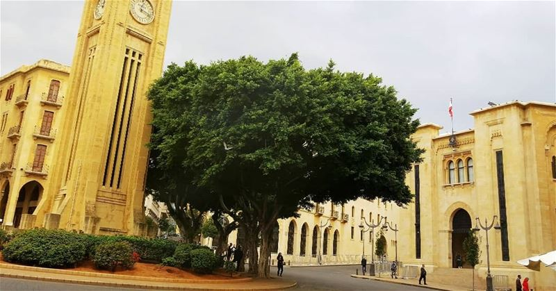 It all starts from Here: My Beirut!... --------------------------------- (Beirut, Lebanon)