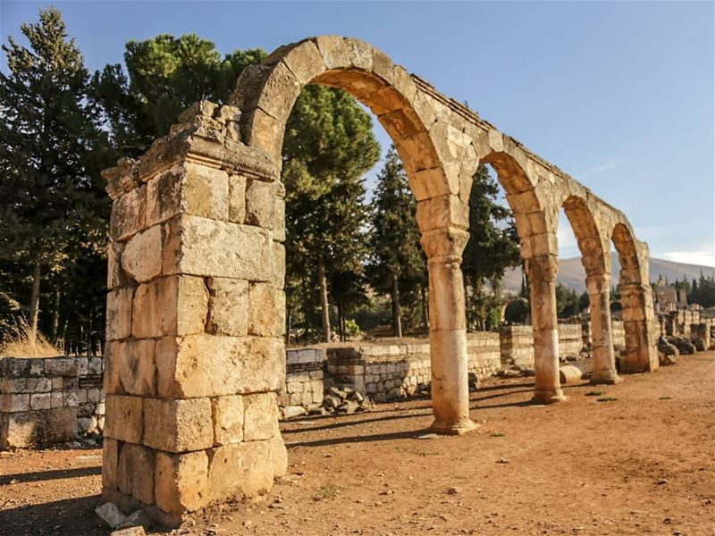 ~ Anjar This archeological site is an outstanding example of 8th century... (`Anjar, Béqaa, Lebanon)