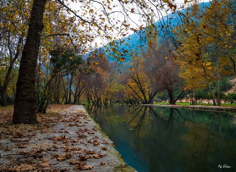 Autumn's magic 🍁🍁🍂.... waterfall lake river paradise watershot... (North Governorate)